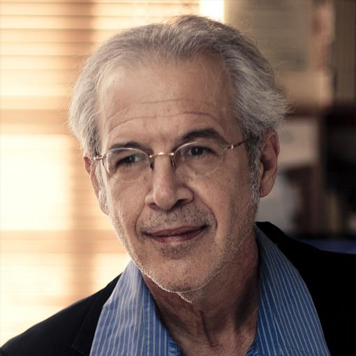 מאיר גולדברג